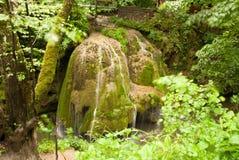 Bigar-Wasserfall Karpaten-Berge, Rumänien Stockbild