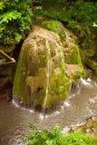 Bigar-Wasserfall Karpaten-Berge, Rumänien Stockfotos