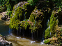 Bigar-Wasserfall in Nationalpark Cheile Nerei Stockfotografie