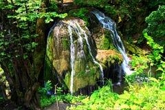 Bigar-Wasserfall, Rumänien Stockfoto