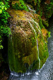 Bigar Waterfall. Bigar cascade in Anina, Romania Royalty Free Stock Image