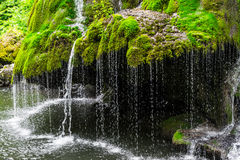 Bigar Waterfall. Bigar cascade in Anina, Romania Stock Images