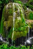 Bigar Waterfall. Bigar cascade in Anina, Romania Royalty Free Stock Photos