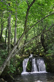 Bigar Waterfall at 45 Parallel from Caras-Severin in Romania stock photography