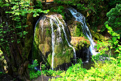 Bigar waterfall, Romania. Bigar waterfall is situated on 45 Parallel, in the forest of Anina Mountains, Romania and is formed by an underground water spring Stock Photo