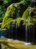 Bigarwaterval in het nationale park van Cheile Nerei Royalty-vrije Stock Foto's