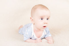Bigeye  crawling baby Stock Photos