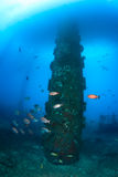 Bigeye fish around the leg of an oilrig Royalty Free Stock Photography