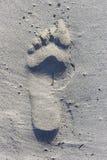 bigfoot royalty-vrije stock fotografie