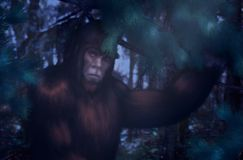 Free Bigfoot Night Hiding In The Woods Stock Image - 140553381