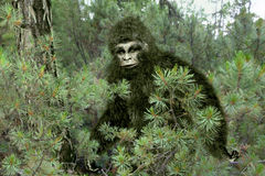 Bigfoot, Yeti.. Raster illustration of Bigfoot Yeti, relic man, snowman in the taiga Stock Image