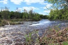 Bigfork flod Fotografering för Bildbyråer