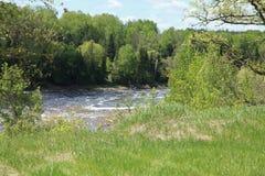 Bigfork flod Arkivfoton