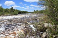 Bigfork rzeka Fotografia Royalty Free