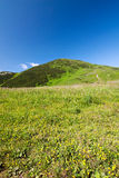 Bigger hill of Little Fatra hills Stock Image