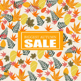 Biggest autumn sale background Royalty Free Stock Photos