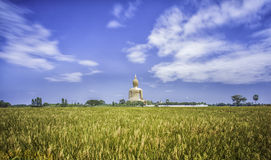 A biggest Buddha in Thailand royalty free stock photos