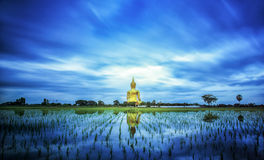 A biggest Buddha in Thailand stock photos
