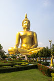 The biggest golden buddha is so beautiful. The biggest golden buddha is so beautiful at Wat Muang, Angthong, Thailand royalty free stock photography