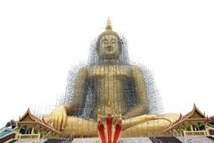 Biggest golden buddha statue Royalty Free Stock Photo