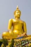 The biggest golden buddha view at Wat Muang. The biggest golden buddha view is so beautiful on the morning at Wat Muang, Aungthong, Thailand Stock Photography