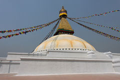 The biggest stupa in the world Royalty Free Stock Photos