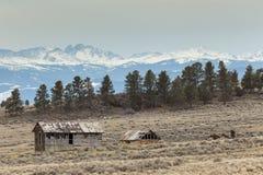 Bighorn-Gebirgsscheune Stockfotografie