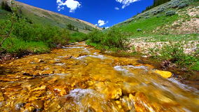 Bighorn Mountains Stream