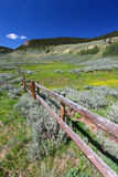 Bighorn National Forest Landscape Royalty Free Stock Photography