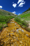 Bighorn National Forest Stream Stock Images