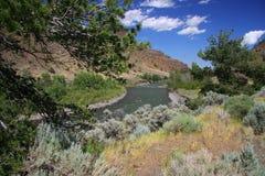 Bighorn rzeka i góry Zdjęcie Stock