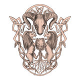 Bighorn Sheep Lion Tree Coat of Arms Celtic Knotwork Tattoo Stock Image