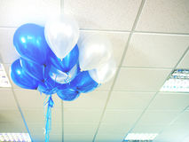 Balloons floating on office ceiling. Bight vintage filtered: balloons floating on office ceiling, work celebration concept background Stock Photos