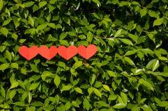 Biglietti di S. Valentino, quattro cuori su erba Immagine Stock Libera da Diritti
