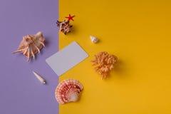 Biglietto da visita con i ricordi marini Fotografia Stock