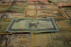 Biglietto del Nepal Banconote delle denominazioni differenti Fotografia Stock