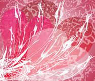 Biglietto di S. Valentino 4 di Grunge Fotografia Stock Libera da Diritti