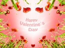 Biglietto di S. Valentino come cuore con i papaveri (14 febbraio, amore) Fotografia Stock