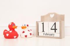 Biglietto di S. Valentino data del 14 febbraio con 2 rossi e le anatre di gomma di amore bianco i Immagine Stock Libera da Diritti