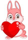 Biglietto di S. Valentino del coniglietto di inverno Fotografie Stock
