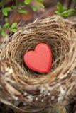 Biglietto di S. Valentino del nido di amore Fotografia Stock Libera da Diritti