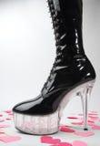 Biglietto di S. Valentino di Spikey Fotografia Stock Libera da Diritti
