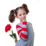 Biglietto di S. Valentino o regalo di giorno di madri Fotografie Stock Libere da Diritti