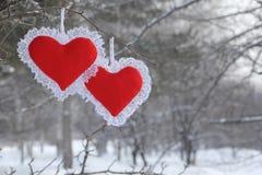 Biglietto di S. Valentino sull'albero Immagini Stock