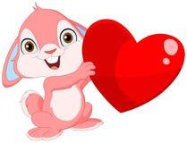 Biglietto di S. Valentino sveglio del coniglietto Fotografia Stock Libera da Diritti