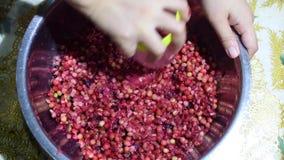 Bignay, antidesma bunius si dirige il vino che elabora schiacciare accurato della frutta con bicchiere stock footage