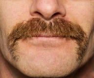 Bigode de Movember fotografia de stock