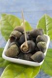 Bigorneaux de crustacés de nourriture - riches en magnésium images stock