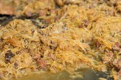 Bigos, ένα πιάτο στιλβωτικής ουσίας Στοκ εικόνες με δικαίωμα ελεύθερης χρήσης