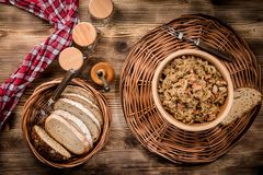 Bigos - μαγειρευμένο λάχανο με το κρέας, τα ξηρά μανιτάρια και το καπνισμένο saus Στοκ Εικόνα